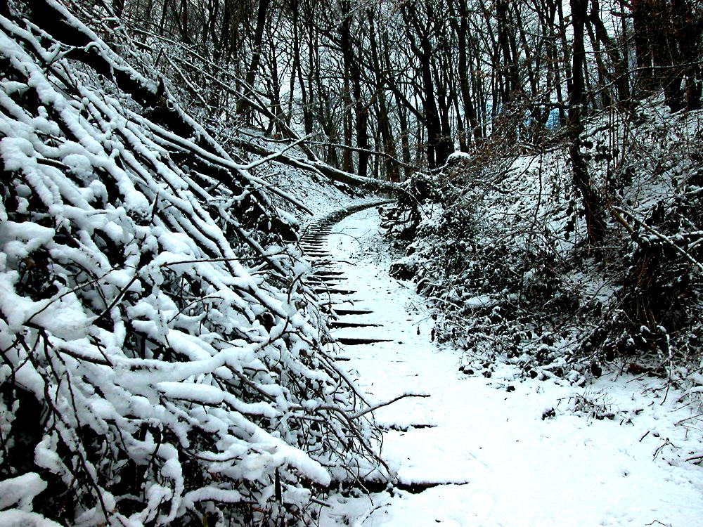 Подъем на гору Кайсберг. Фото: Алексей Потупин.